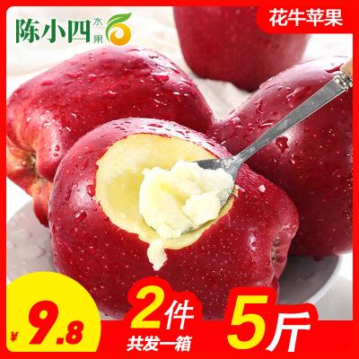 【前100名減2元】甘肅天水花牛蘋果 2.5斤 65-75mm 中果 紅蘋果 新鮮水果 生鮮水果 陳小四水果