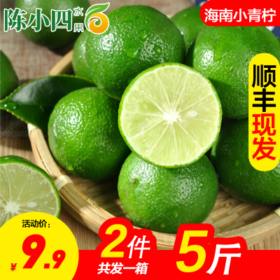 【順豐直發】新鮮青檸檬 2.5斤 檸檬 新鮮水果 生鮮水果 陳小四水果 冷藏國產柑橘類 其他