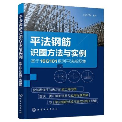 平法钢筋识图方法与实例基于16G101系列平法新图集钢筋混凝土结构施工图设计规范建筑工程造价管理基本技术人_ONEAD7