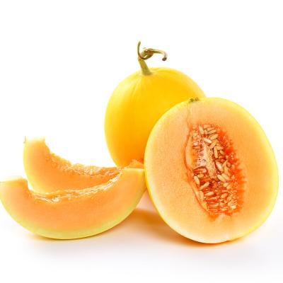 薯家上品 陜西黃河蜜瓜2.5斤 黃皮黃肉脆甜新鮮蜜瓜當季應季水果