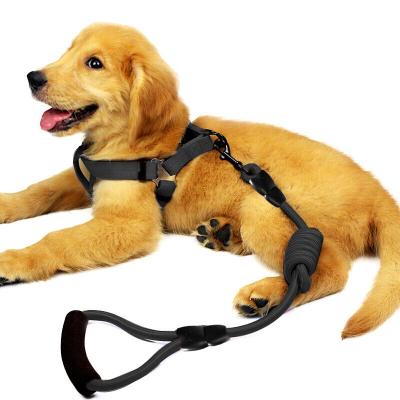 狗狗牽引繩狗鏈子項圈泰迪金毛貓小型中大型幼犬牽狗繩子寵物用品 狗繩 紅色牽引繩+胸背 XS