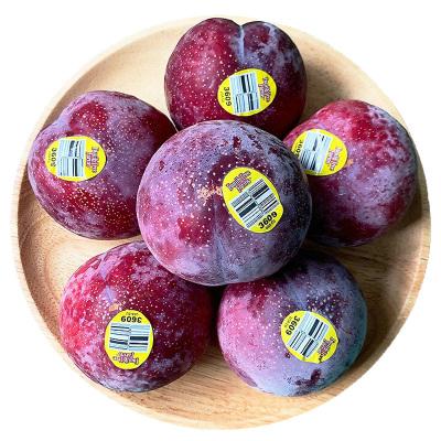 美国恐龙蛋鸵鸟蛋2斤 新鲜红布林李子新鲜水果