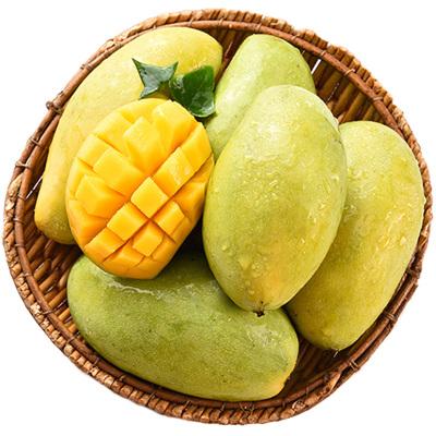 【兩件起售】田陽館 越南玉芒青皮芒果2.5斤(單果200-400g)新鮮水果