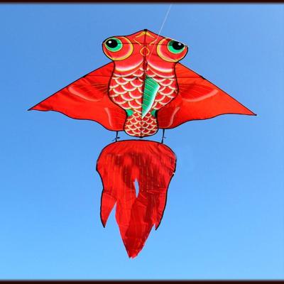 閃電客風箏大型金魚風箏線輪小卡通易飛特色風箏兒童成人易飛