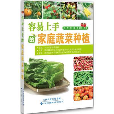容易上手的家庭蔬菜種植