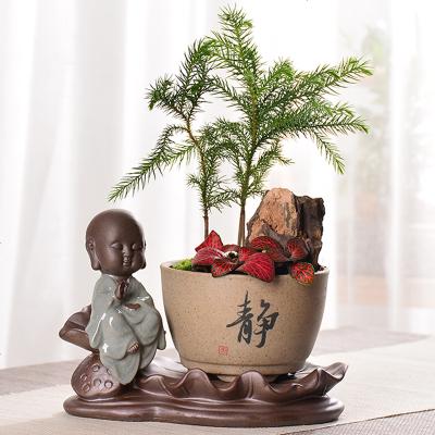 【优选】新品小和尚禅意文字多肉花盆紫砂陶瓷摆件绿植物文竹透气盆栽批发