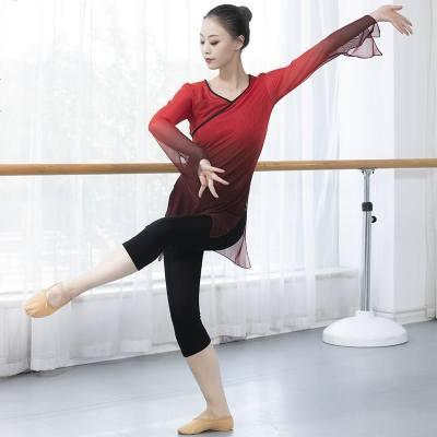 古典舞练功服女身韵舞蹈纱衣飘逸中国风上衣套装现代网纱形体服装