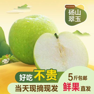 (买3斤送2斤)安徽砀山翠玉香梨整箱5斤梨子新鲜当季果园直采砀山脆梨水果
