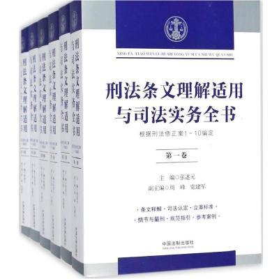 刑法條文理解適用與司法實務全書張述元9787509391075