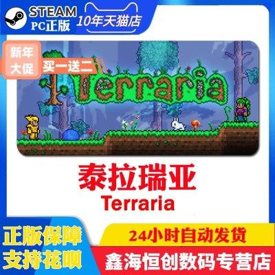 STEAM PC正版游戲 Terraria 泰拉瑞亞 多人聯機 貨