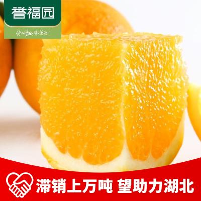【助力湖北,感恩有你】秭歸倫晚臍橙新鮮橙子2.5斤裝 65-70mm