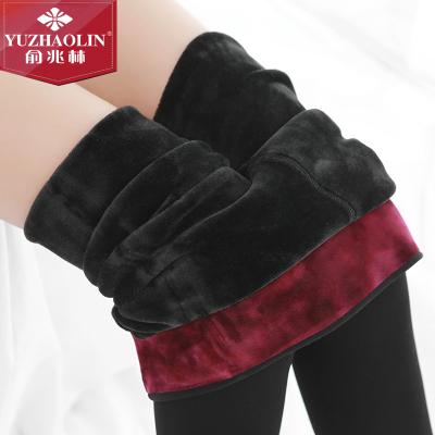 俞兆林品牌直營紫紅絨保暖褲女護腰打底一體褲女士錦綸外穿踩腳褲