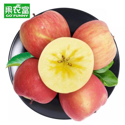 果农富 新疆阿克苏苹果中果 带箱约10斤 单果75-80mm 当季新鲜水果冰糖心红富士苹果红旗坡农场老树榨汁脆甜苹果