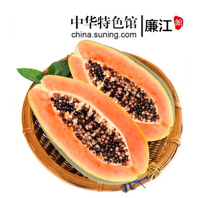 【中華特色】廉江館 冰糖紅心青皮牛奶木瓜 5斤 熱帶時令新鮮水果 華南