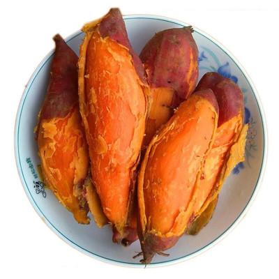 新鲜沙地红薯蜜薯1斤装 小果 农家自种蜜薯地瓜黄心小香薯糖心番薯现挖沙地黄心蜜薯烤红薯