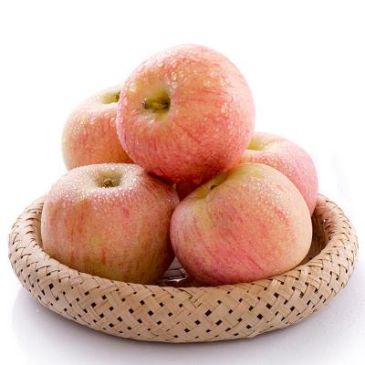 汇尔康(HR) 新鲜苹果红富士平安果圣诞果 应季水果 苏宁生鲜 非冰糖心嘎啦 带箱5斤重