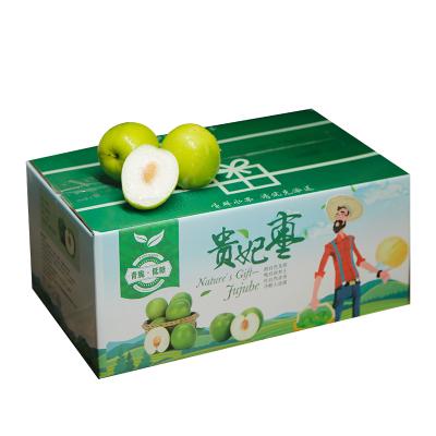 【礼盒包装】台湾牛奶大青枣750g 新鲜蜜枣现摘脆枣当季应季水果