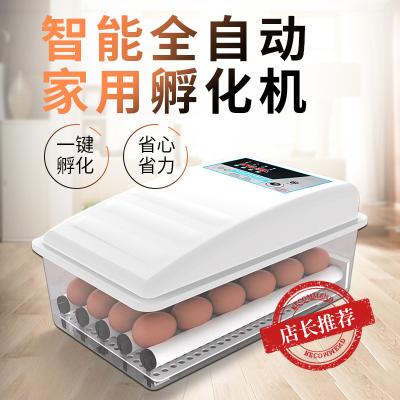 納麗雅(Naliya)孵化器全自動小型家用小雞鴨鵝蛋孵化機智能孵蛋器恒溫水床孵蛋箱 30枚水床雙電帶照蛋泡沫箱體