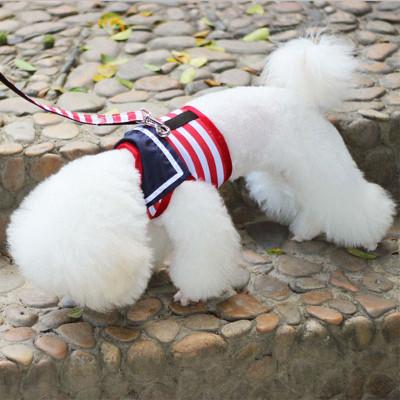 【牵引绳+胸背】小狗狗牵引绳子宠物牵引带泰迪狗链子宠物胸背带