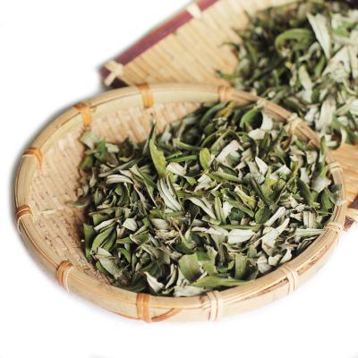 博多客沙棘叶100g吕梁沙棘果叶子沙棘茶可做沙棘纯露