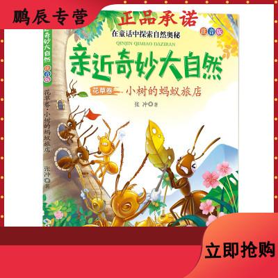親近奇妙大自然:花草卷·小樹的螞蟻旅店(彩圖注音版)9787556095919
