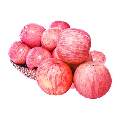 陜西洛川紅富士蘋果 4.5-5斤 中果 新鮮水果 蘇寧生鮮 陳小四水果
