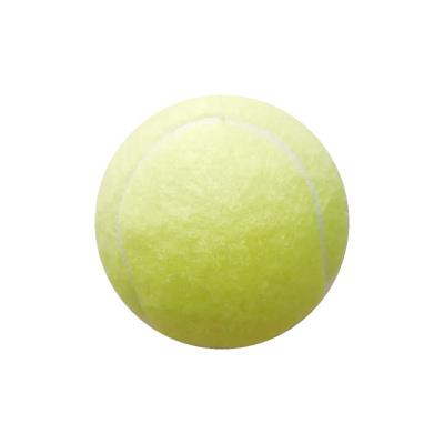 WITESS正品網球單人初學訓練網球耐打帶線帶底座