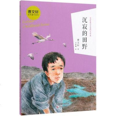 沉寂的田野/曹文軒金色童年系列 曹文軒|繪畫:呂秋梅 新蕾