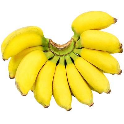 廣西小米蕉 2.5斤 【拍4件減9元合并發9斤】