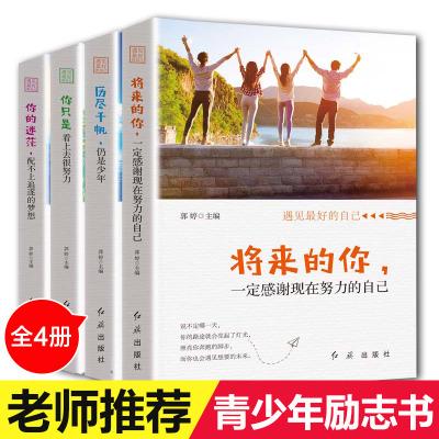 4冊你只是看上去很努力 將來的你一定會感謝現在努力的自己 歷盡千帆 寫給看起來一直很努力卻尚未成功的你 青春正能量勵志書