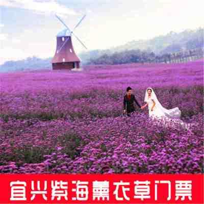 [紫海薰衣草莊園-大門票]電子票宜興紫海薰衣草莊園門票