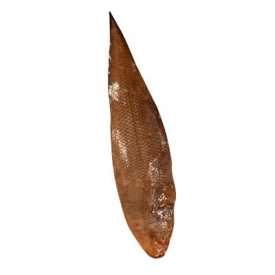 新鲜舌头鱼 踏板鱼 牛舌鱼 龙利鱼 鱼柳 深海鱼新鲜海鲜水产 1KG(2斤)