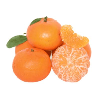 正宗广西武鸣沃柑 净重9斤 单果60-70mm 甜橘子桔子胜皇帝柑新鲜水果 贡柑不上火新鲜水果