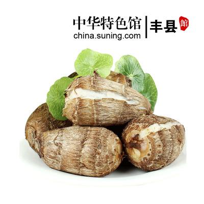 【中华特色】新鲜小芋头2.5斤装 毛芋头农家蔬菜 小香芋 芋艿红薯 汇尔康,HR