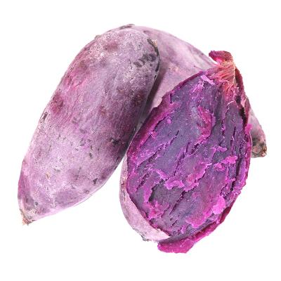 農家小紫薯5斤裝 新鮮蔬菜現挖番薯地瓜香薯紫薯 桃又淘(tao you tao)