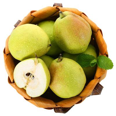 新鮮香梨毛重9斤 香梨紅香酥梨梨子 新鮮水果