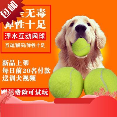 金毛狗狗玩具用品網球耐咬磨牙訓練球求大中型馬犬投擲浮水網球[定制] 網球4個裝送大號拋球桿