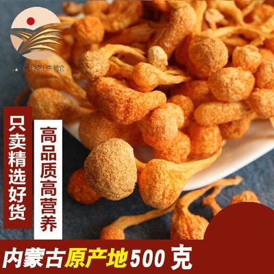 蟲花干貨500g特級孢子頭無硫蛹蟲金北蟲菇新鮮煲湯材料