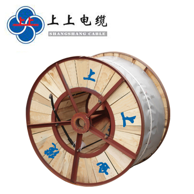 帮客材配 上上电缆 ZR-YJV5*10  新能源汽专用线铜芯交联聚 乙烯绝缘聚氯乙烯护套电力电缆电线  10米
