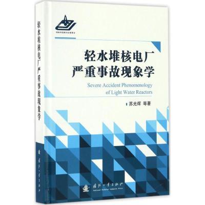 輕水堆核電廠嚴重事故現象學9787118104677國防工業出版社