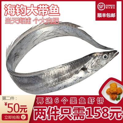 沈志雄船长 东山岛野生海鲜海钓大带鱼带鱼段刀鱼 800g-850g/条