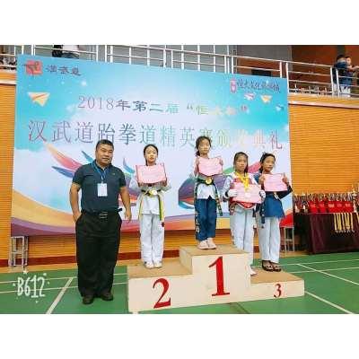 汉武道跆拳道30课时