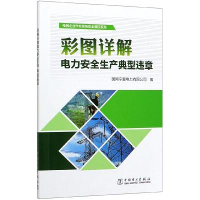 彩圖詳解電力安全生產典型違章/電網企業作業現場安全管控系列