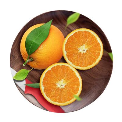 秭歸倫晚臍橙 春橙 5斤 中果 臍橙 橙子 新鮮水果 生鮮水果 陳小四水果