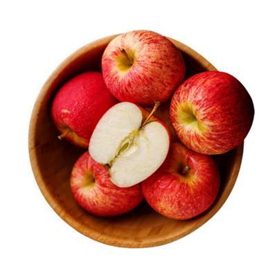 烟台红富士苹果 5斤装 苹果 冷藏国产苹果类 新鲜水果 陈小四水果