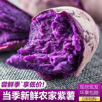 农家小紫薯2.5斤装 新鲜蔬菜现挖番薯地瓜香薯紫芋头山芋 偶数发货 汇尔康,HR