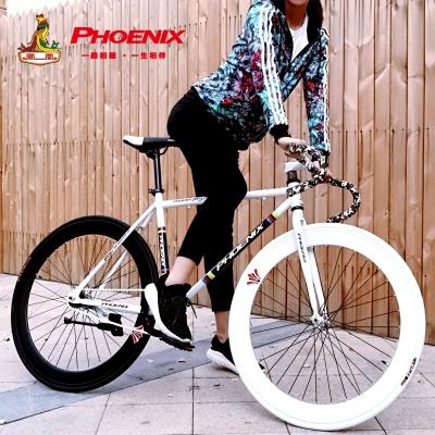 鳳凰成人死飛自行車26寸男女學生單車公路賽車倒剎充氣胎跑車