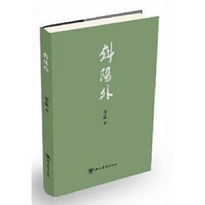 正版 斜阳外 四川美术出版社 周吉敏 9787541064760 书籍