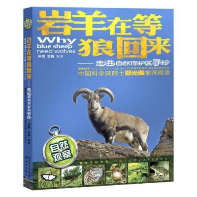 巖羊在等狼回來——走進自然保護區尋珍(中國科學院院士鄭光美推薦閱讀,幾十年自然觀察的體驗,大量精美的動植物生態照片)