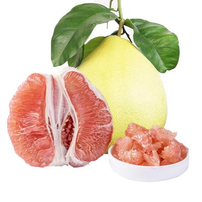 【一賢生鮮】福建平和紅心蜜柚子 新鮮水果 酸甜適口 果汁豐富 3-4個凈重8.7-9斤裝一級果 西沛單果2斤以上